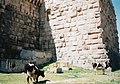 Ancient Roman theatre (Bosra) 1995 01.jpg