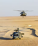 Apache and Sea Hawk joint fire exercise 140708-Z-AR422-106.jpg