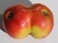 Apfelzwilling.png