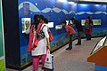 Aquarium Corner - Life Science Gallery - Digha Science Centre - New Digha - East Midnapore 2015-05-03 9967.JPG