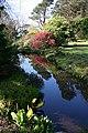 Arduaine Gardens - geograph.org.uk - 1273506.jpg