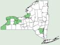 Asimina triloba NY-dist-map.png