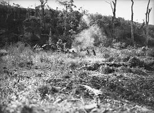 2/4th Battalion (Australia) - Troops from the 2/4th attack around Wewak with tank support, 10 May 1945