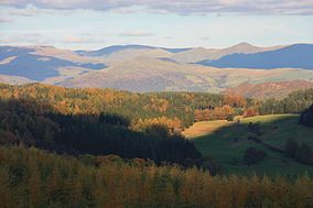 Autumn colours and cloud shadows at Grizedale Forest.jpg