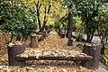 Autumn in Eram Garden 2019-12-09 09.jpg