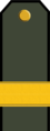 BG-Army-OR7.png