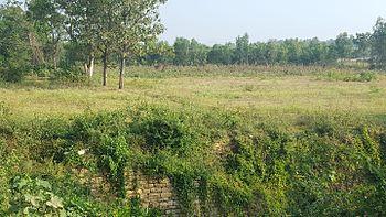 Babu reddy's farm.jpg