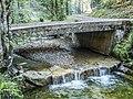 Bachscheidi Brücke über die Hintere Töss, Steg im Tösstal ZH – Wald ZH 20180916-jag9889.jpg