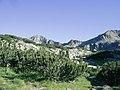 Baderischki Chukar end Donchovi karauli - panoramio.jpg