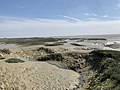 Baie Somme Hourdel - Cayeux-sur-Mer (FR80) - 2021-05-29 - 59.jpg