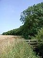 Bail Wood - geograph.org.uk - 524116.jpg