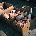 Bambole al mercato (3994735715).jpg