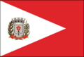 Bandeira Santa Rita d'Oeste.png