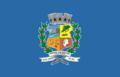Bandeira de Nova Venécia (Espírito Santo).png