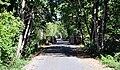 Banks-Vernonia Trail.jpg