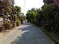 Barangay's of pandi - panoramio (101).jpg