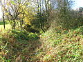 Barrmill quarry lane from entrance.JPG
