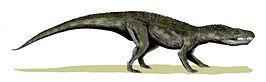 Baurusuchus BW.jpg