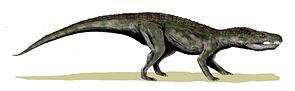 Lebendrekonstruktion von Baurusuchus salgadoensis