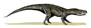 Baurusuchus - Life restoration of B. salgadoensis