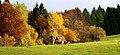 Bavarian fall.jpg