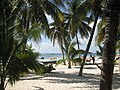 Beach with palm trees at Isla Mujeres - panoramio.jpg