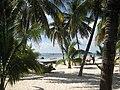 Beach with palm trees at Isla Mujeres - panoramio.jpg