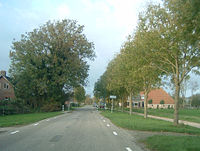 Bears-Friesland.jpg