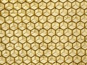 Commercial honeycomb foundation, made by pressing beeswax between patterned metal rollers.