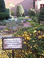 Benjamin Rush Medicinal Plant Garden - IMG 7233.JPG