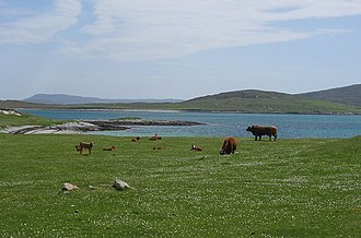Machair - The machair on Berneray, Outer Hebrides