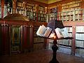 Bibliotecayuso.jpg