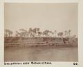 Bild från familjen von Hallwyls resa genom Egypten och Sudan, 5 november 1900 – 29 mars 1901 - Hallwylska museet - 91629.tif