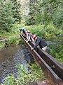 Black Hills National Forest - Social 4.jpg
