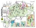 Black Hills National Forest Recreation Guide.pdf