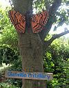 Blackgang Chine - Butterfly Walk