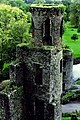 Blarney Castle Grounds - Adjacent towers - geograph.org.uk - 1605600.jpg