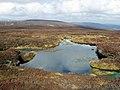 Bog pool on Baudnacauner - geograph.org.uk - 771188.jpg