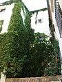 Bonito edificio en Plasencia.jpg