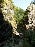 Borovianka bez vody - panoramio.jpg