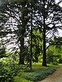 Botanischer Garten Freiburg - DSC06470.jpg