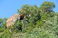 Boulders (15820242924).jpg