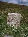 Boundary marker on Long Goat. - geograph.org.uk - 493980.jpg