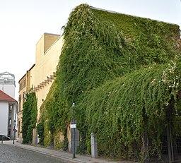 Alte Knochenhauerstraße in Braunschweig