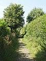 Bridleway from Little Frieth to Skirmett - geograph.org.uk - 943450.jpg