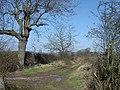 Bridleway near Welldale Farm - geograph.org.uk - 748134.jpg