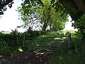 Bridleway to Faxton. - geograph.org.uk - 456929.jpg