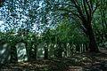 Brockley Cemetery-18 - panoramio.jpg