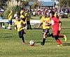 Brown Road Soccer.jpg