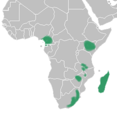 Brownleea distribution map.png
